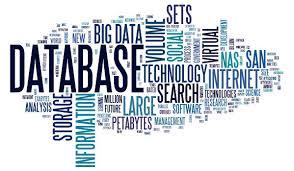 Databases v Narratives – My blog