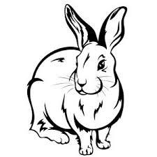 Kleurplaat Van Een Konijntje Printen Rabbit Silhouette Rabbit