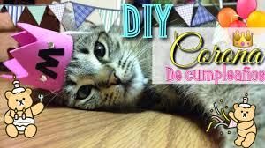 Diy Corona De Cumpleanos Para Gatos Youtube