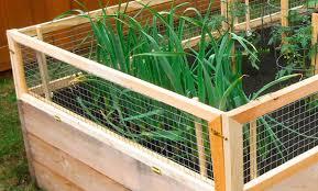 How To Build A Raised Garden Bed Diy Garden Bed Arrow Fastener
