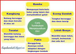 11+ Kunci Jawaban Tema 2 Kelas 6 Proklamasi Kemerdekaan Indonesia Images