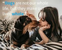 dog quotes captions and messages shutterfly