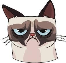 Grumpy Cat Vinyl Car Van Decal Sticker Grumpy Cat Cat Drawing Cat Art