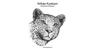 Wilde Katten Kleurboek Voor Volwassenen 1 By Nick Snels