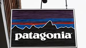 Patagonia's Anti-Growth Strategy   The New Yorker