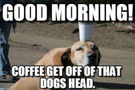 good morning coffee memes images to kick start your day