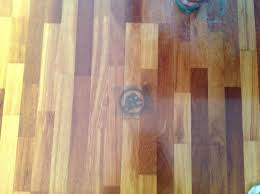 pet urine sns from hardwood floors