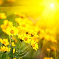 Obituary of Mable Doris Smith | Funeral Homes & Cremation Services ...