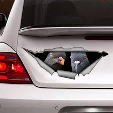 Pigeon Car Decal Bird Decal Vinyl Decal Bird Sticker Etsy