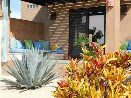 Alejandra - Guest houses for Rent in Todos Santos
