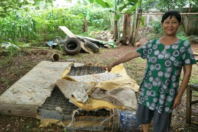 Merinding! Wanita Ini Tak Sadar Tidur Bersama Ular yang Terjebak Di dalam Kasur