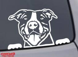 White Pitbull Car Decal Cardecal