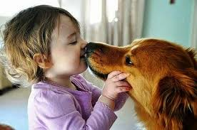 Image result for animal pictures with humans