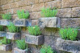 vertical gardening ideas garden ideas