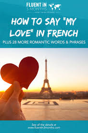 how to say my love in french plus 28