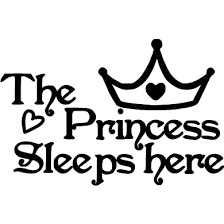 The Princess Sleeps Here Wall Decal Philippians 413 Creations