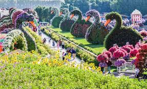 حديقة الزهور بدبي من اكبر حدائق الزهور فى العالم مشاعر اشتياق