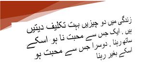 love quotes in urdu urdu quotes in r urdu english