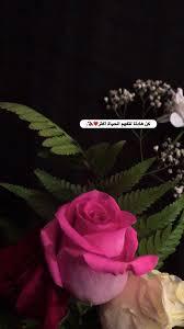 Pin By Rasha On ستوريات Arabic Tattoo Quotes Funny