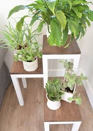 diy plant stand ideas for indoor