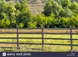 Rustic Wooden Fence Against The Background Of A Green Field And Stock Photo Alamy
