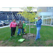North Ridgeville Schools Beautification Project Continues Loraincounty Com
