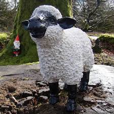 spiky white black sheep forward facing