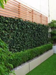Privacy Garden Designs Seclusion For Urban Outdoor Spaces