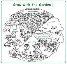 setting up and running a school garden