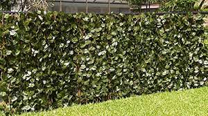 Set Of 1 E K Sunrise 4 X 8 Faux Ivy Privacy Fence Screen With Mesh Back Artificial Leaf Vine Hedge Outdoor Decor Garden Backyard Decoration Panels Fence Cover