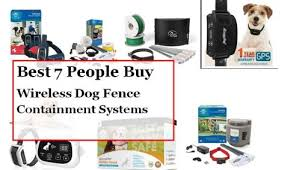 Best Wireless Dog Fence Best 8 Reviews With Examples