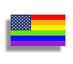 Rainbow Usa American Sticker Gay Pride Love Lgbt Cup Cooler Etsy
