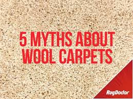 cleaning wool carpets rug doctor