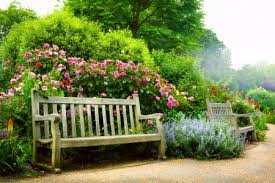 art bench and flowers in the morning in