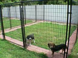 Patio Stones Around The Edge Of The Fence Makes It Hard To Dig Under Great Idea For The Outside Of Chicken Coops And Dog Kennel Outdoor Dog Fence Outdoor Dog