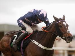 Course hippique : 4 chevaux morts dans un hippodrome en Angleterre ...