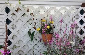 55 Lattice Fence Design Ideas Pictures Popular Types Fence Design Lattice Fence Fence Art