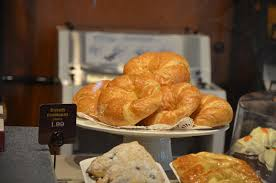 panera bread rises in palm coast with