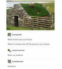 What If This Was Your House Meme By Memelust Memedroid
