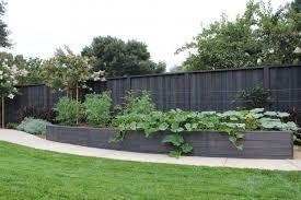 Trend Alert Black Stained Raised Beds Gardenista Easy Landscaping Backyard Fences Backyard Garden