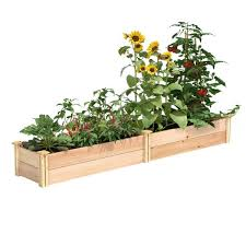 Greenes Fence 16 In X 8 Ft X 11 In Premium Cedar Raised Garden Bed Rc169612p The Home Depot
