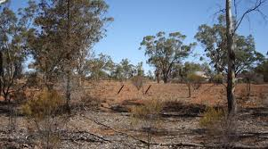 Outback where dust storms, not rain, inhabit the skies | The RiotACT