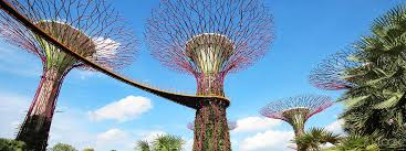 Up To 10 Off Singapore Gardens By The Bay Tickets Cloud Forest Flower Dome Klook Philippines