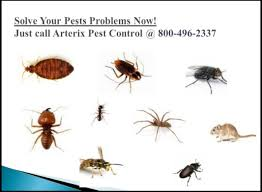 Residential Pest Control Services Rockville MD | Pest control, Pests, Pest  control services