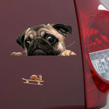Funny 3d Pug Dogs Watch Snail Car Window Decal Cute Pet Puppy Laptop Sticker Ebay