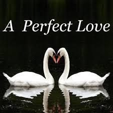 Fay Ann Couture & Ivan Ellis Lackey - A Perfect Love - Listen on Deezer