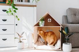 maison pour chat à faire soi même
