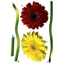 Freestyle 19 In X 27 In Gerbera Daisy Wall Decal Fs17011 The Home Depot