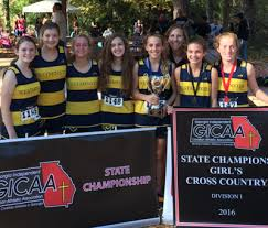 Lady Lions win back-to-back GICAA cross country titles | Sports |  oconeeenterprise.com