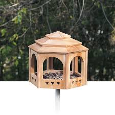 build a gazebo for the birds the